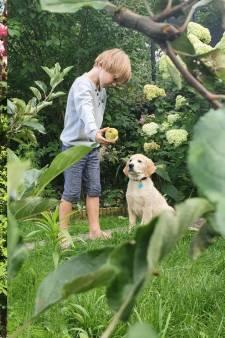 Ewa ging van klein balkon naar mega tuin met fruitbomen: 'Een herinnering aan kindertijd in Polen'