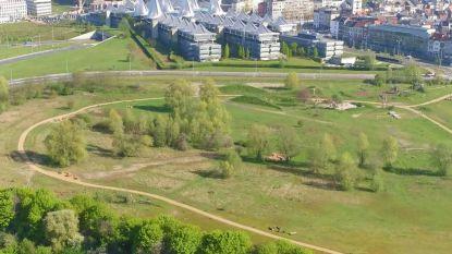 Stadsbestuur en AWV starten met studie voor uitwerking Ringpark Zuid