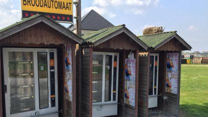 Boeven breken broodautomaten open (en gaan aan de haal met geld en brood)