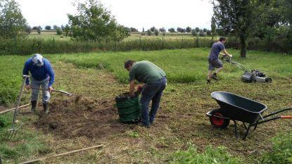Vrijwilligers gezocht om bomen te planten in voedselbos aan Oude Kale