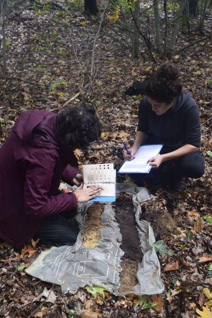 Studenten van de Wageningen Universiteit deden in oktober onderzoek in de Eerselse bossen.