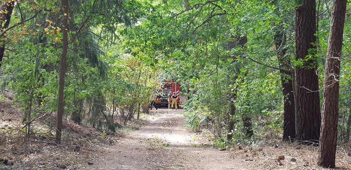De brandweer rukte groots uit omdat de woning midden in het bos stond.