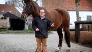 Vandaag en morgen geen paardenkoetsen in Brugge