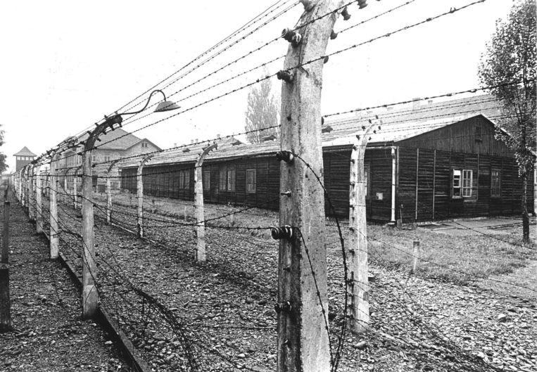 Hirt beweerde uit Auschwitz te zijn ontsnapt door onder een hek door te glippen. Beeld anp