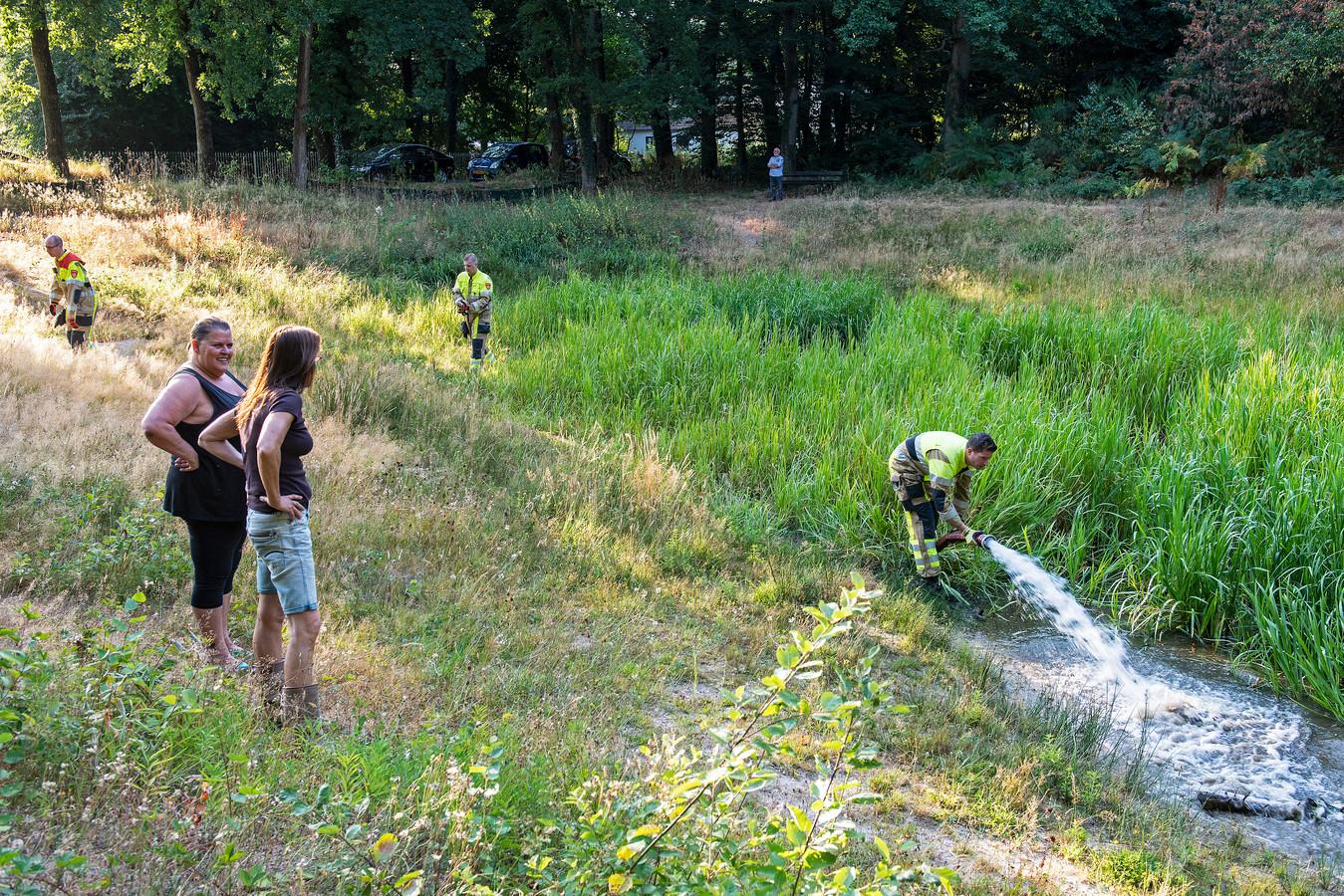 Vorig jaar pompte de brandweer nog 20.000 liter water in 't Koepeltje.