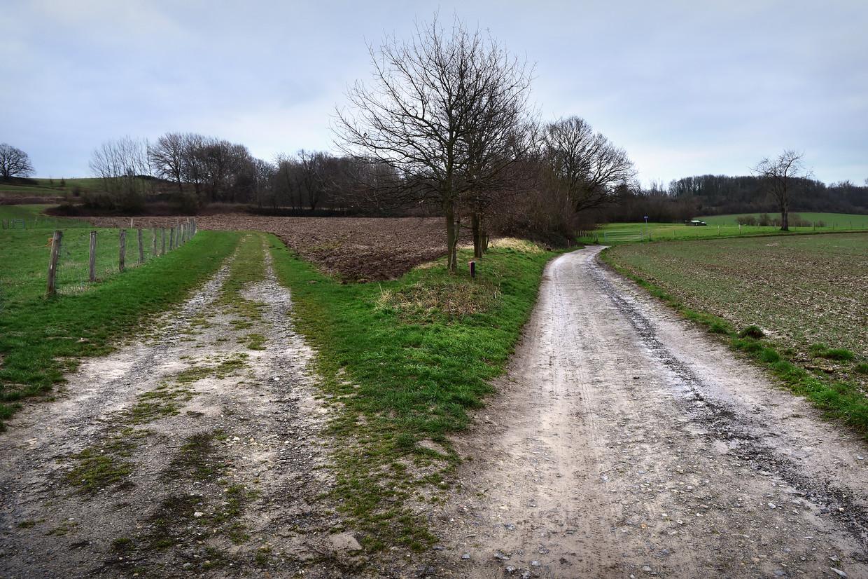 Heuvellandschap in Zuid-Limburg. Beeld Marcel van den Bergh / de Volkskrant