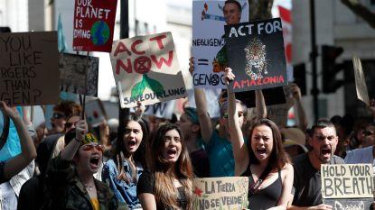 """""""Onze longen staan in brand!"""" Betogers aan de Braziliaanse ambassade in Londen roepen op tot redden van het Amazonewoud"""