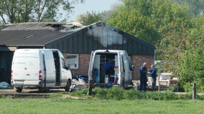 """Felle brand vernielt stal van Hoeve Ten Bossche: """"55 koeien gered, maar melkinstallatie zwaar beschadigd"""""""