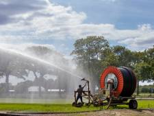 Beregeningsverbod funest voor Liemerse boeren: vrees voor terugkerende muizenplaag