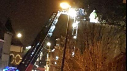 Laatste windstoot voor middernacht berokkent schade in Wondelgem en Mariakerke: boom valt op huis