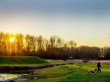 GroenLinks wil nieuw permanent festivalterrein in West