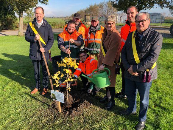 Een afvaardiging van het schepencollege en medewerkers van de groendienst plantten de boom.