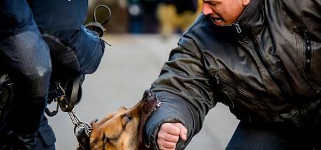 Politiehond Bor neemt inbrekers te grazen: 'Ze waren gewaarschuwd'