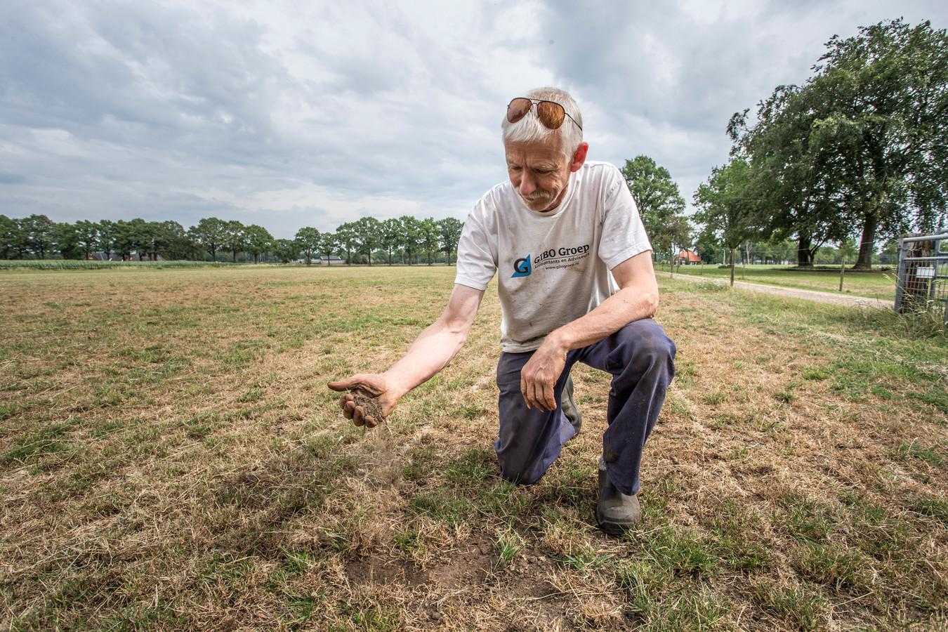 Gerrit Rappard (60) met zijn uitgedroogde landerijen.