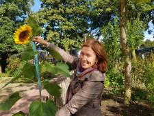 Zorgcentrum Huis ter Leede stopt met het beheer van de sociale moestuin in Leerdam