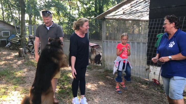 De vakantie is voorbij: tijd om hond of kat weer op te halen