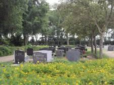 Werk grafvelden Domburg en Koudekerke kan beginnen