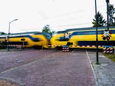 'Levensgevaarlijk': iemand rent achter losgebroken hond aan en wordt bijna aangereden door trein in Eindhoven
