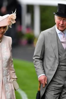 Na België nu 'babynieuws' uit Brits koningshuis: deze man beweert de zoon te zijn van prins Charles en Camilla