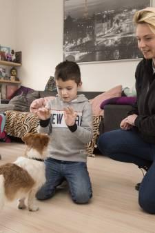 Workshops kind en hond moet drama's voorkomen