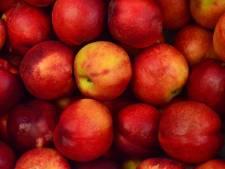 Hierom is een appel per dag écht gezond