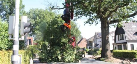 'Oude boom' geveld in Nijverdal, weg in beide richtingen afgesloten