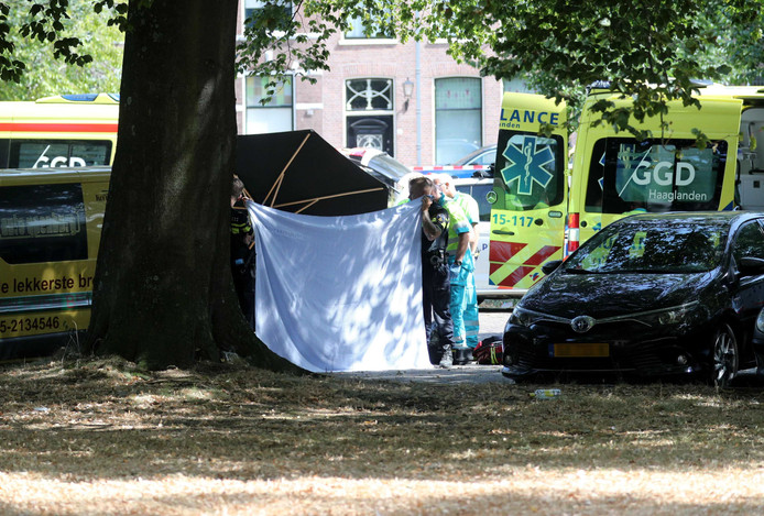 Hulpdiensten op de plek aan het Kalverbos in Delft.