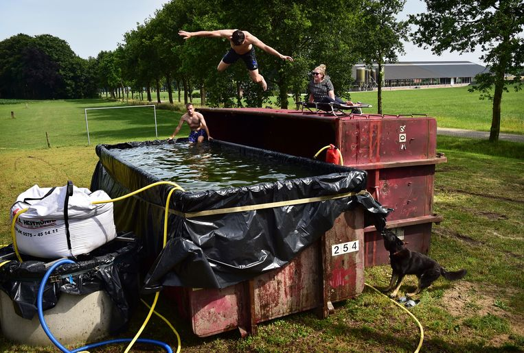 In het Gelderse Toldijk bouwden jongeren met een aantal containers, landbouwplastic en een eigen filtersysteem een eigen zwembad in een weiland. Beeld Marcel van den Bergh / de Volkskrant