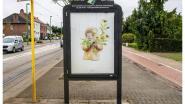Geen billboards maar kunst in het straatbeeld