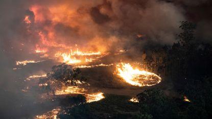 Australische bosbranden dreigen nu ook vernietigend onweer met gevaarlijke vuurtornado's op te wekken