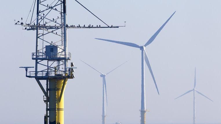 Windturbines in het offshore windpark Egmond aan Zee (OWEZ), het eerste grote windpark dat in de Noordzee voor de Nederlandse kust is gebouwd. Beeld anp