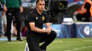 """Johan Walem na zure nederlaag tegen Polen: """"Misschien moeten wij eens een blok neerzetten"""""""