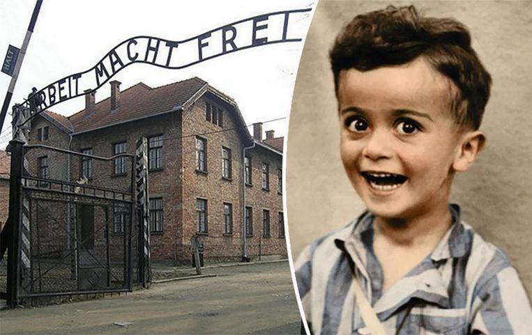 De vierjarige Istvan Reiner werd niet lang na deze foto geëxecuteerd in Auschwitz.