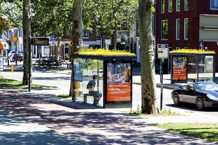 Bushokjes met een groendak in Utrecht.