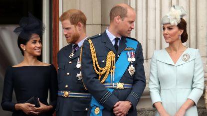 """Het rommelt tussen Harry en William: """"Hun vrouwen willen aandacht. En ze hebben gelijk"""""""